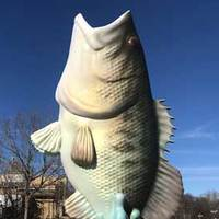 Manny, 12-Foot-Tall Fish