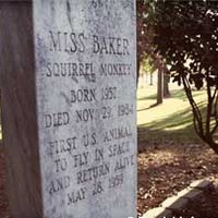 Grave of Miss Baker, Space Monkey