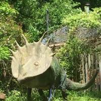 Yard Dinosaur of Old Farwell