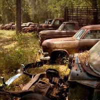 Ford Truck Collection