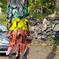 Hawaiian Shoe Tree: Flip Flops