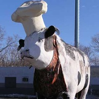 Cow With a Chef's Hat