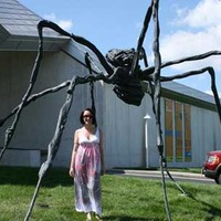 Big Spider Sculpture
