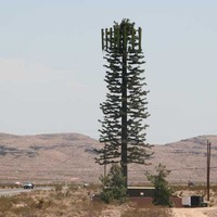 Cell Phone Tree That Fools No One