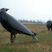 Big Crow Statues