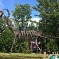 Giant Steel Dinosaur Skeleton