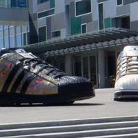 Adidas Big Shoes