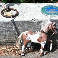 Tiny Horse Project