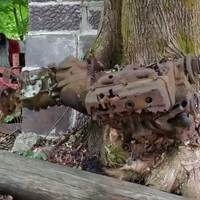 Engine Eaten by a Tree