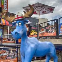 Blue Moose With Mountie Hat