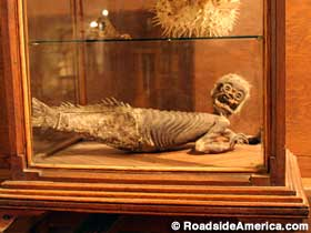 Fiji mermaid at the Bird Cage Theater, Tombstone, AZ.
