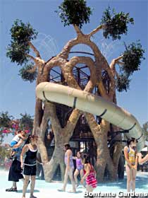 Circus Tree replica water attraction.