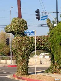 Topiary poodle.