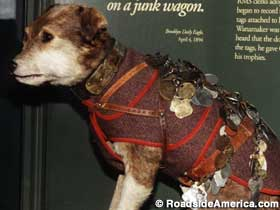 Owney, the postal service mascot.