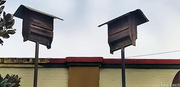 Downtown Bat Houses.