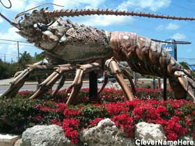 Giant Lobster.