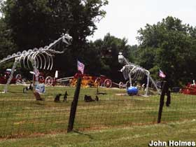 Dinosaurs and yard art.