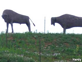 Bison sculptures.