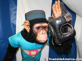 Monkey waves farewell to the Dime Museum?