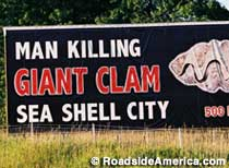 Man Killing Giant Clam.