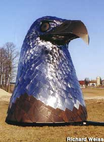 Stainless steel eagle head.