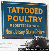 Poultry Tattoo sign.