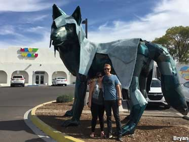 Meow Wolf.