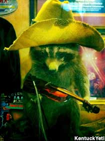 Raccoon with a fiddle.