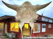 Giant Buffalo Skull Doorway