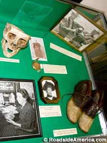 Display of skull, shoes and other items.